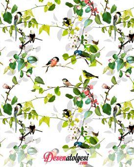 Kuşlar Dalda Güzeldir